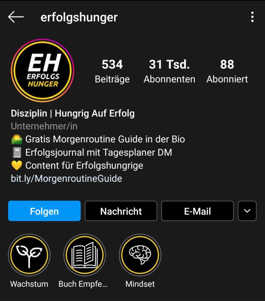 Screenshot zur Analyse des Instagram-Profils von erfolgshunger